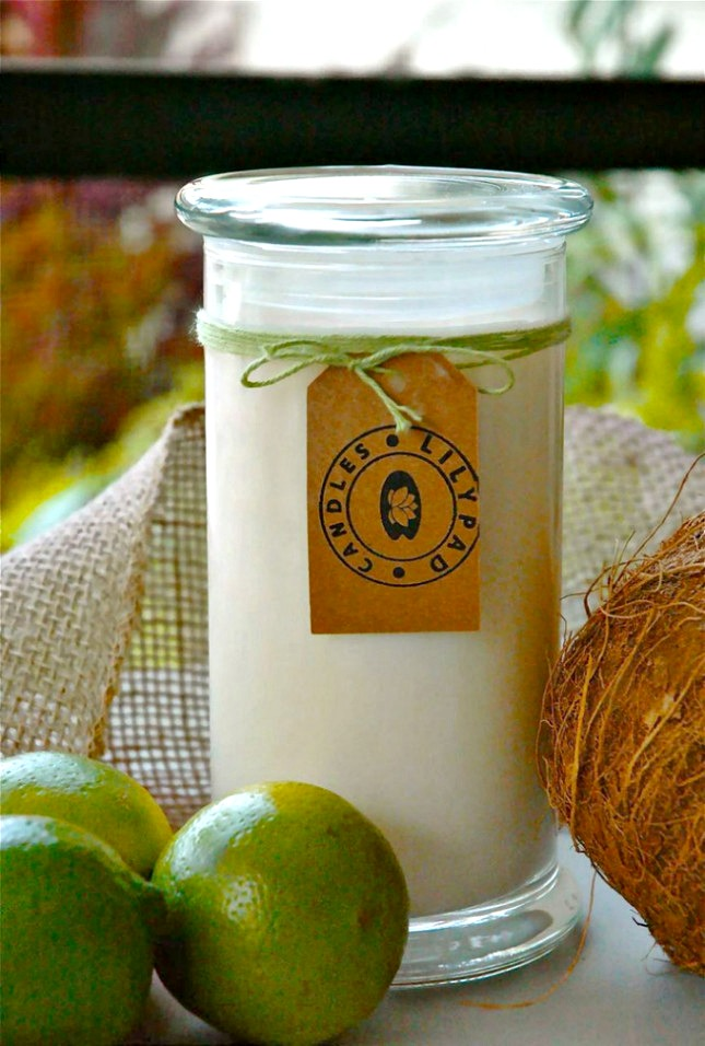 lilypad-candles-coconut-lime-verbena-soy-candle-2_956_1024x1024.jpg