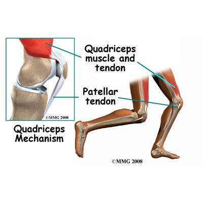 Photo: Houston Methodist Orthopedics & Sports Medicine